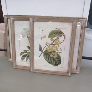 HD126 Botanical Art 19