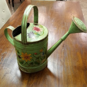 NE137 $41 Watering Can